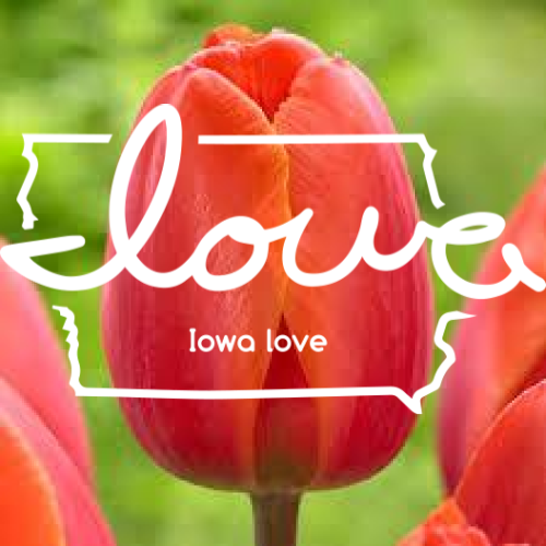"See You at ""Tulip Time"" in Pella, May 2-4!"