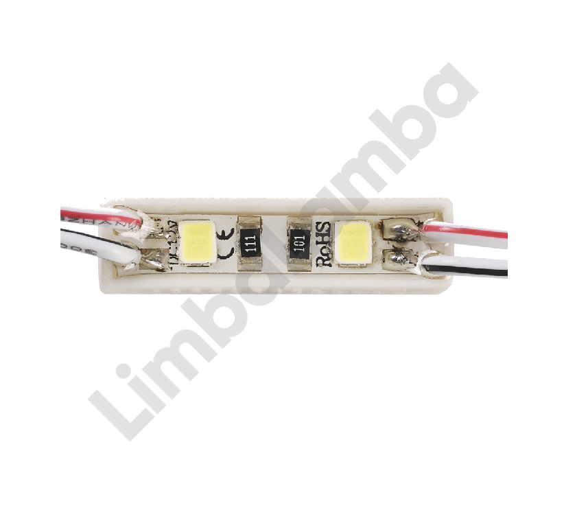 DC LED EPB 2 lW 2 Çipli Modül Led 1000K