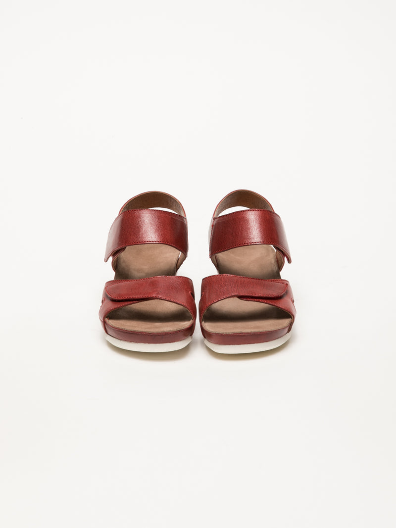 DarkRed Velcro Sandals