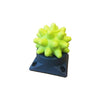 Beastie Ball firm x 1 PLUS base - by RumbleRoller