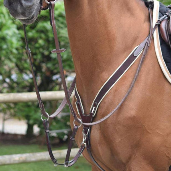 Jump'In - Collier de chasse élastique + martingale One