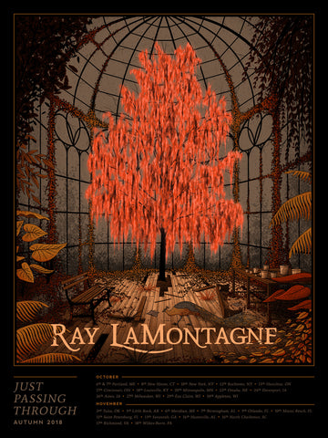 Ray LaMontagne - Just Passing Through 2018