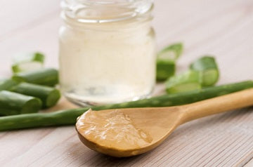 How Aloe Vera Gel Can Help with Eczema for You and Your Family