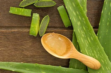 Dangerous aloe vera gel ingredients – Check your label!