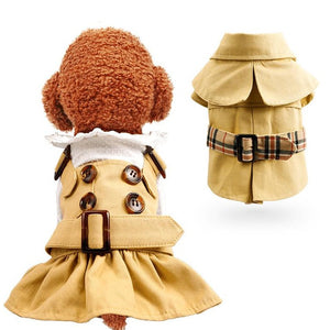 Teddy Bear Windbreaker Bomei pet skirt Button skirt