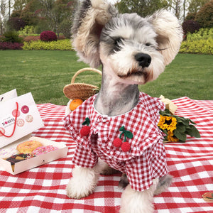 Dog clothes small dog plaid shirt