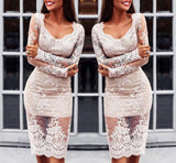Sexy Lace Bodycon Dress