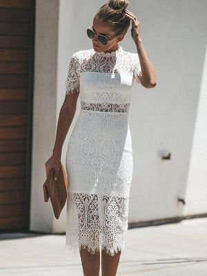 Cut Out Detail Sheer Panel Chic Lace Bodycon Dress