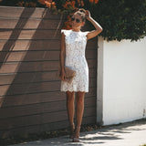 Casual Sexy Hollow Out Lace Splicing Mini Dresses