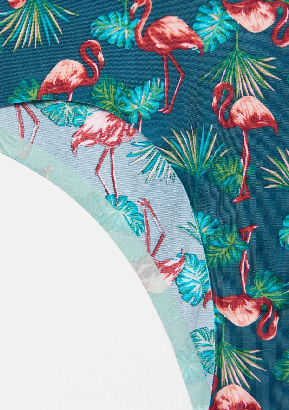 Flamingo Palm