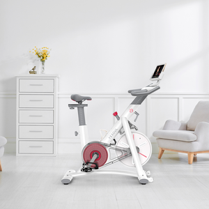 YESOUL S3 exercise bike for home use - Poland Warehouse