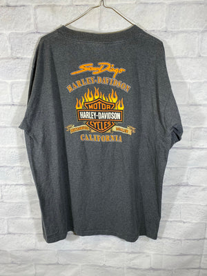 Harley Davidson double graphic tshirt