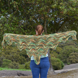 That 70's Shawl Sample