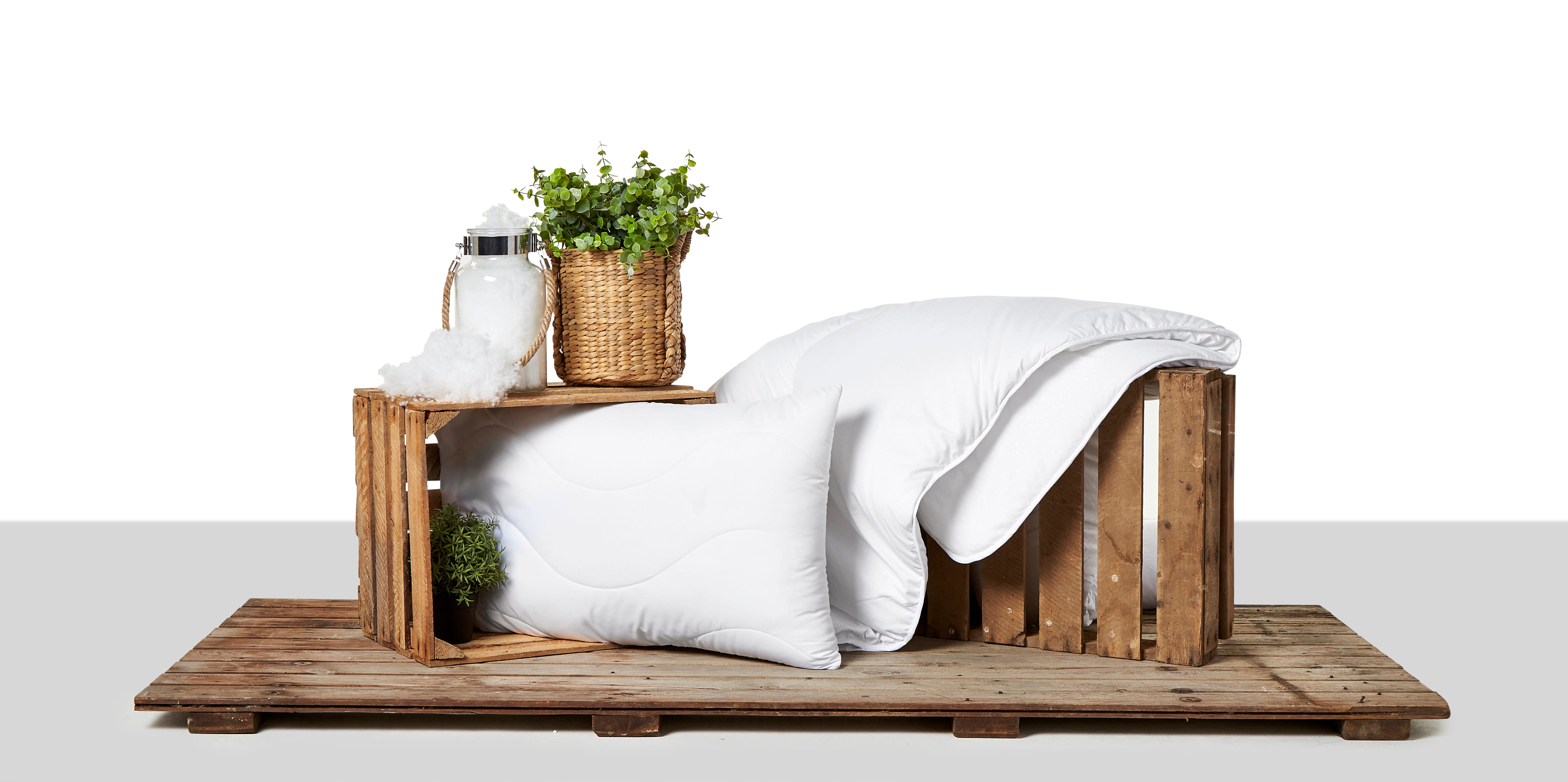 Introducing The Eco Pillow