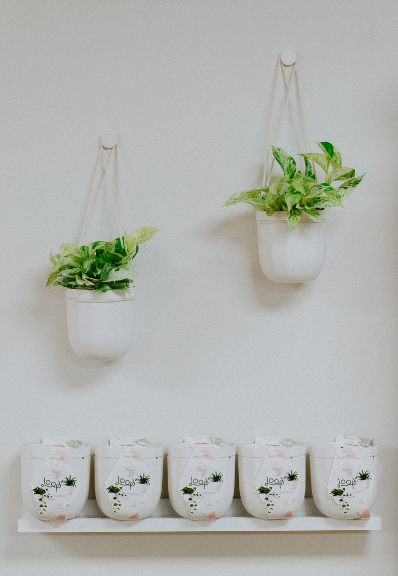 Loop Hanging Planter
