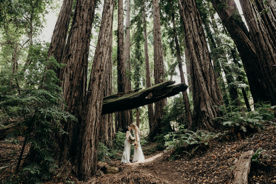 Top 5 US Elopement Destinations For 2021