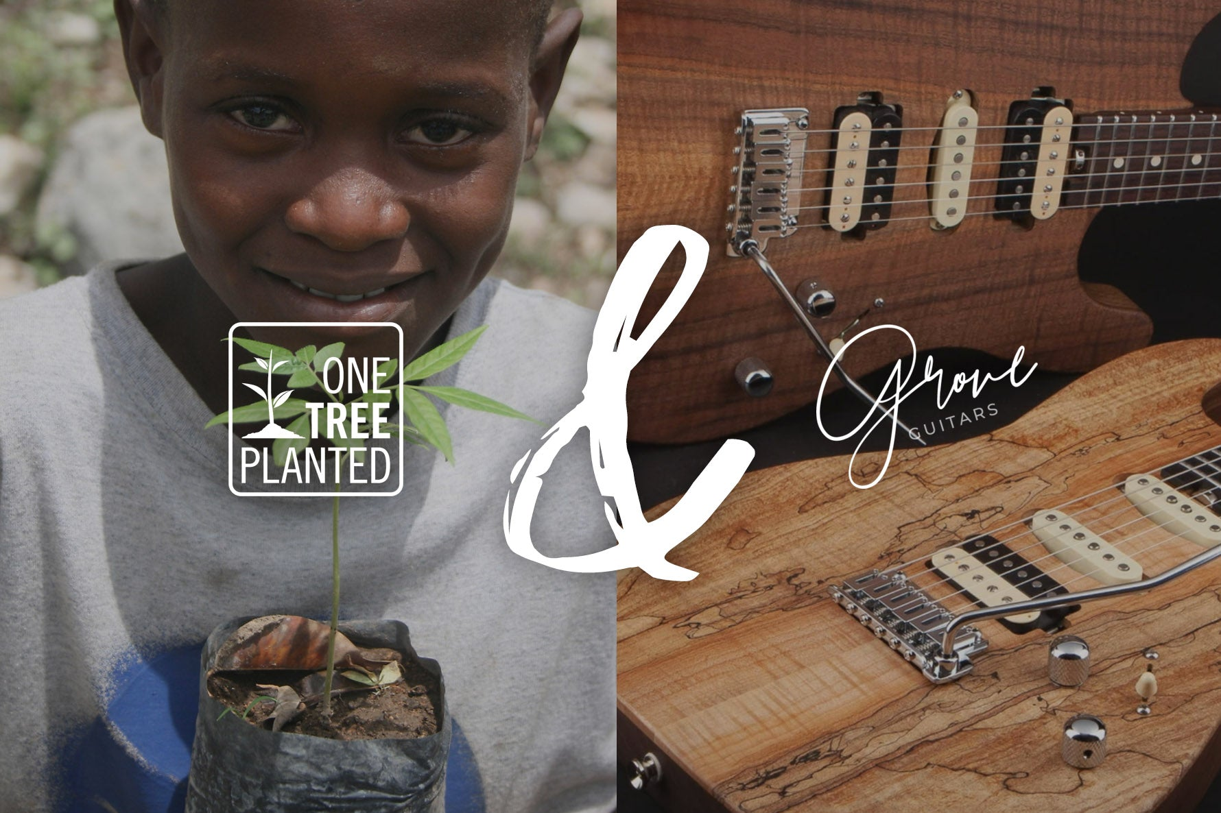 One Tree Planted & Grove Guitars