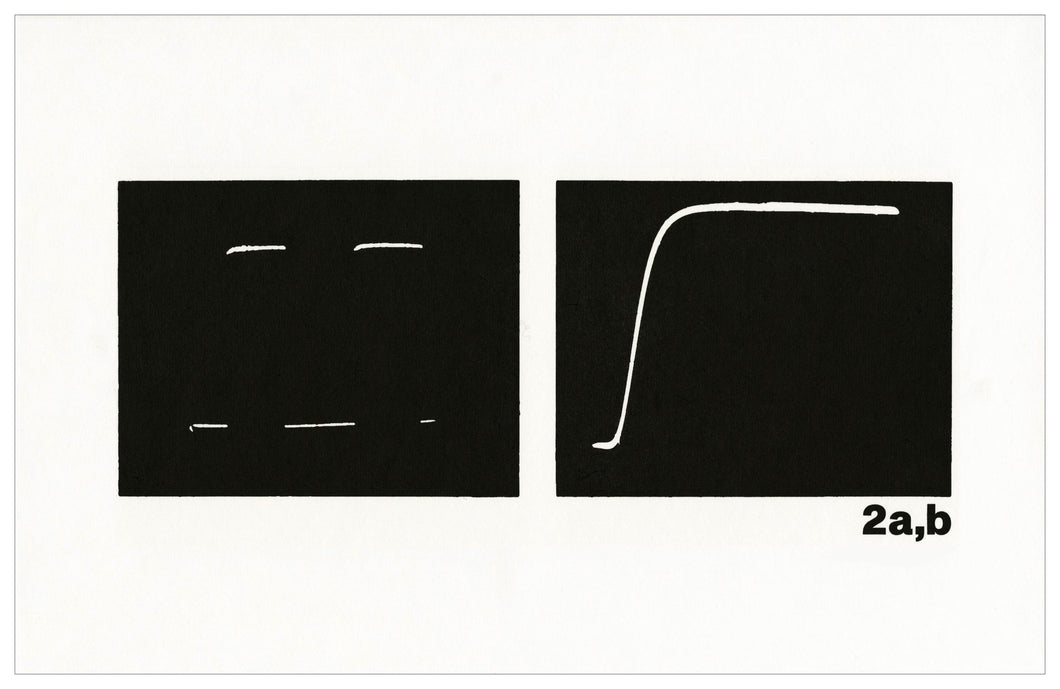 Micah Lexier - The Oscilloscope Drawings (2a,b)