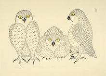 Kananginak Pootoogook - Conference of Owls