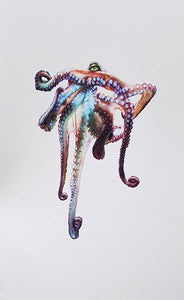 Meggan Winsley - Untitled (Colourful  Octopus)