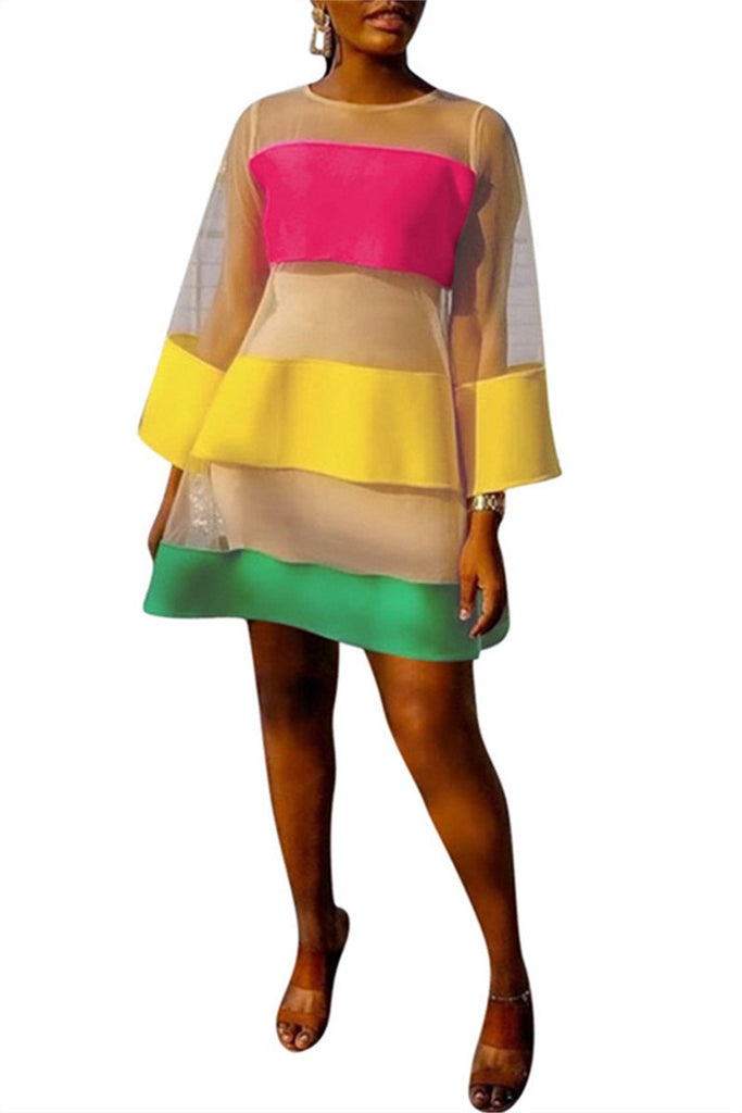 Color Patchwork Long Sleeve Mesh Dress