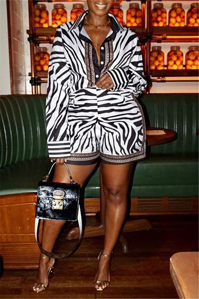 Zebra Print Long Sleeve Casual Two Piece Sets
