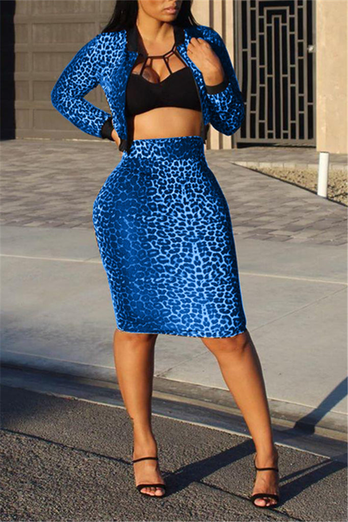Leopard Print Long Sleeve Sexy Two Piece Dress