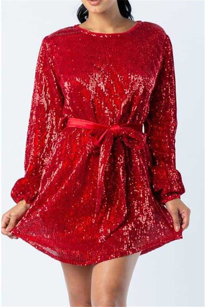 Solid Color Long Sleeve Sequined Dress
