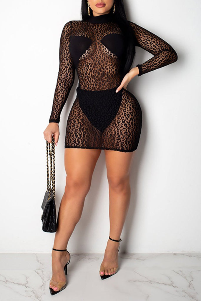 Leopard Print See-Through Two Piece Dress