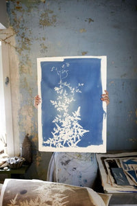 ATELIER CYANOTYPE FLORAL / LA PHOTO SANS APPAREIL PHOTO !