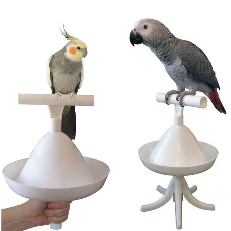 CAITEC Bird Toys Portable Perch and Training Tool Light Weight Easy to Clean Safe Sturdy Tool for All Sizes Parrots