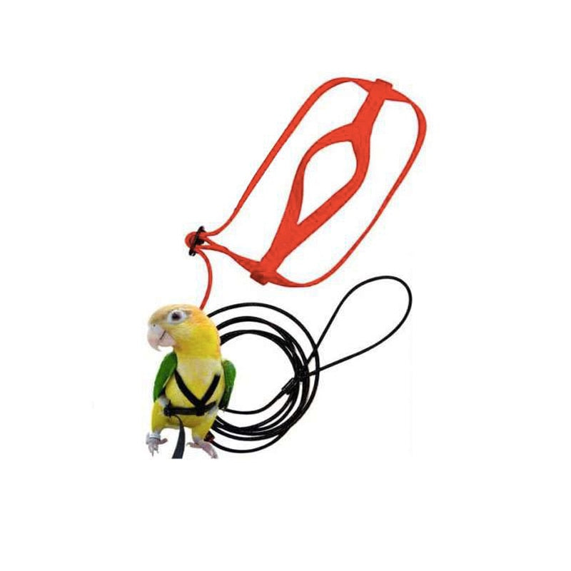 Anti-bite Flying Training Rope Parrot Bird Pet Leash Kits Ultralight Harness Leash Soft Portable Pet Playthings