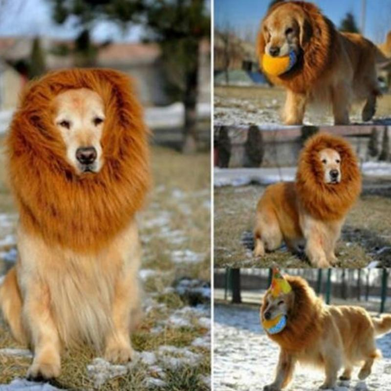 Lovely Large Dogs Halloween Pet Apparel Cat Fancy Dress Up Clothes Lion Mane Wig