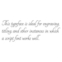 Load image into Gallery viewer, Rhino Single Line Engraving Font - White Linen