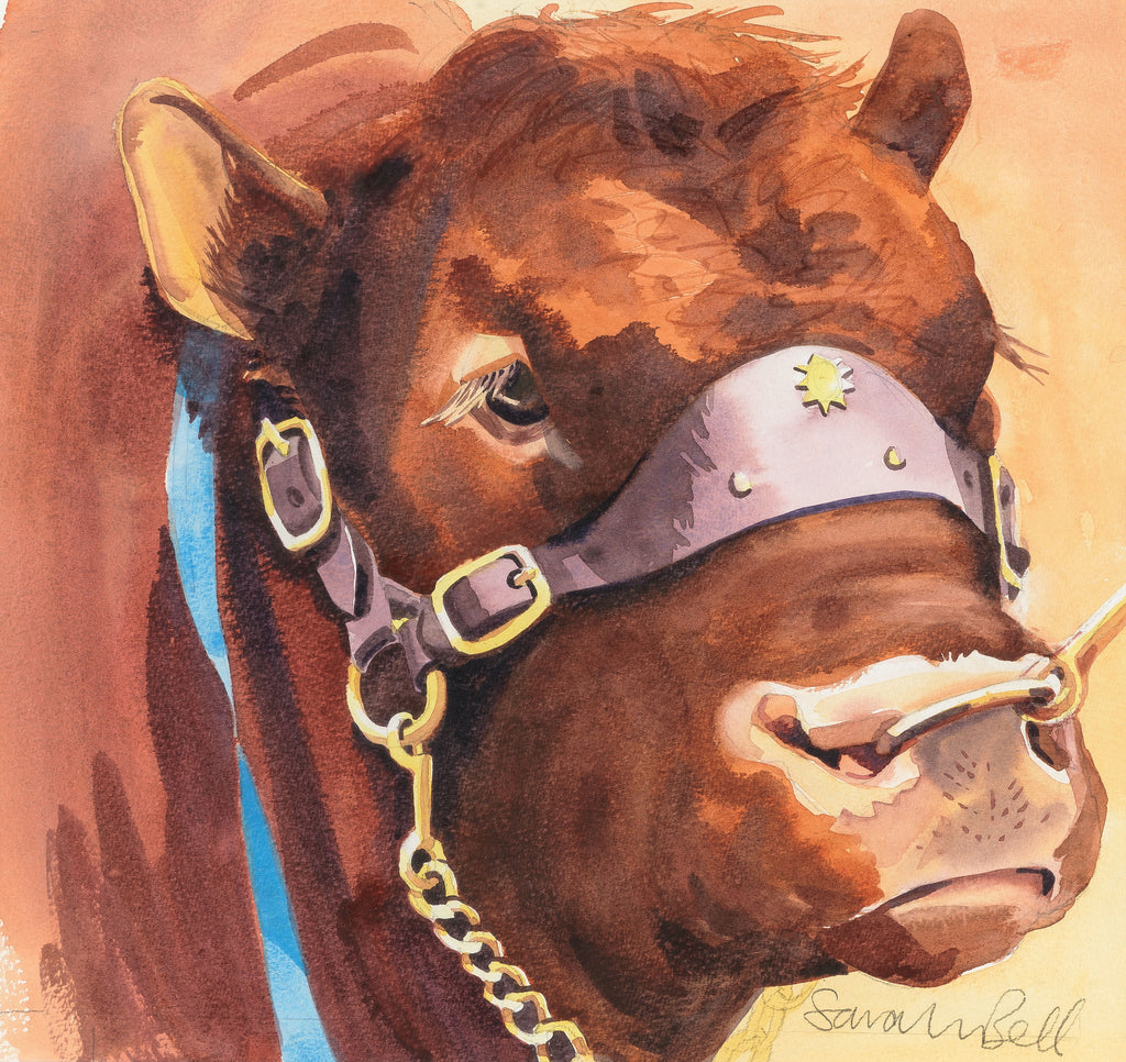 """South Devon Bull""by Sarah Bell Blank Greeting Card"