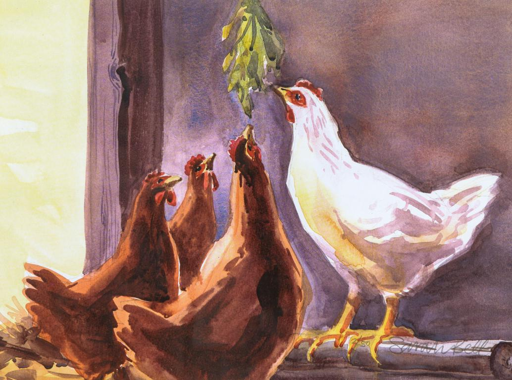 """Chickens getting a treat "" by Sarah Bell Blank Greeting Card"