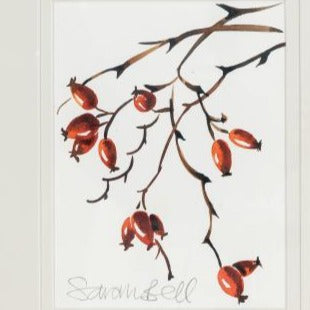 """Rosehips"" By Sarah Bell an Original Watercolour from the Archers Cook Book."