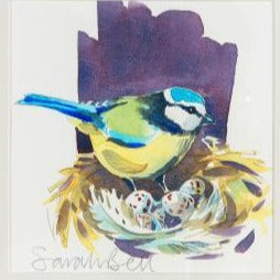 """Blue Tit"" By Sarah Bell"