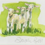 """Spring Lambs"" By Sarah Bell"