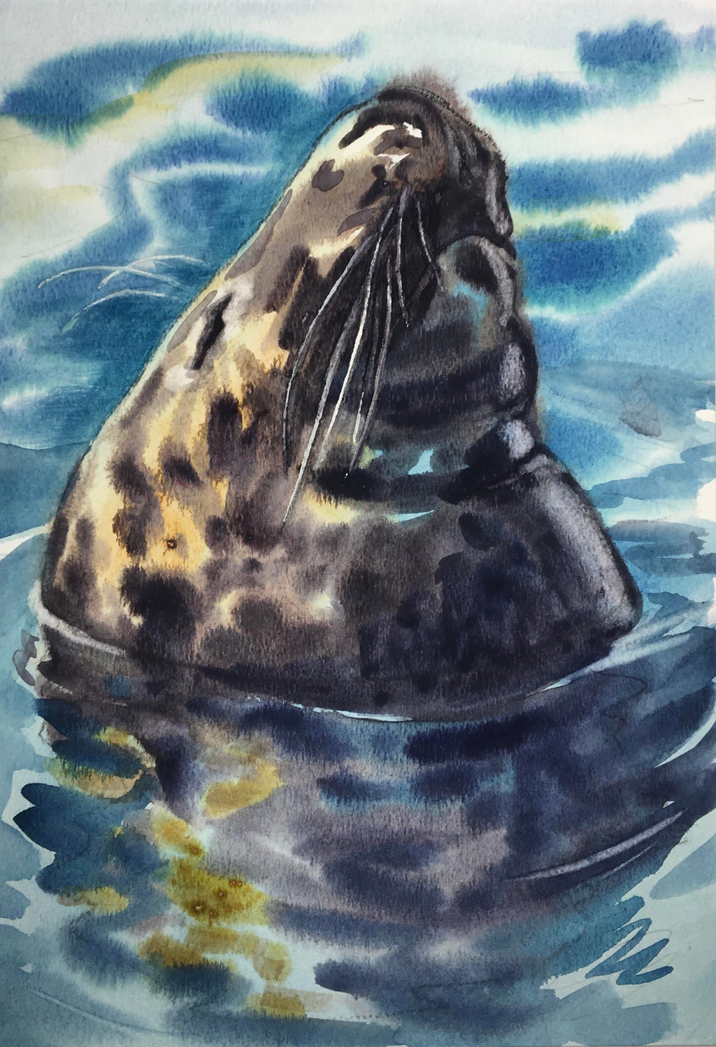 """Nudger"" Grey Seal Original Watercolour by Sarah Bell. Photo ID by The Cornwall Seal group Research Trust."