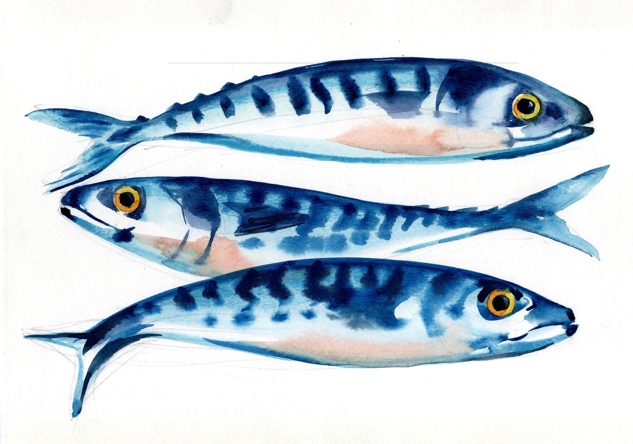 Print Of Three Mackerel