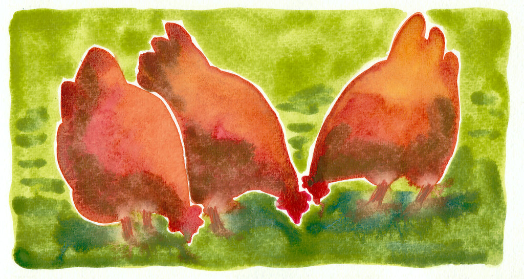 """Trio of Buff Orpington Hens"" by Sarah Bell Blank Greeting Card"