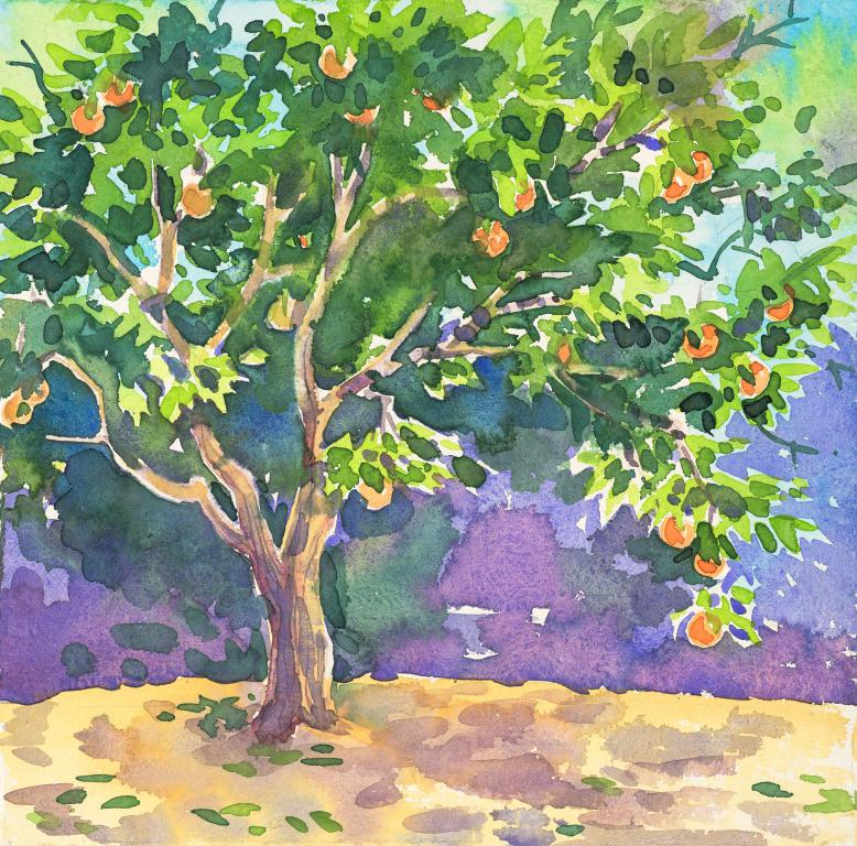 """Spanish Orange Tree "" Original Watercolour by Sarah Bell"