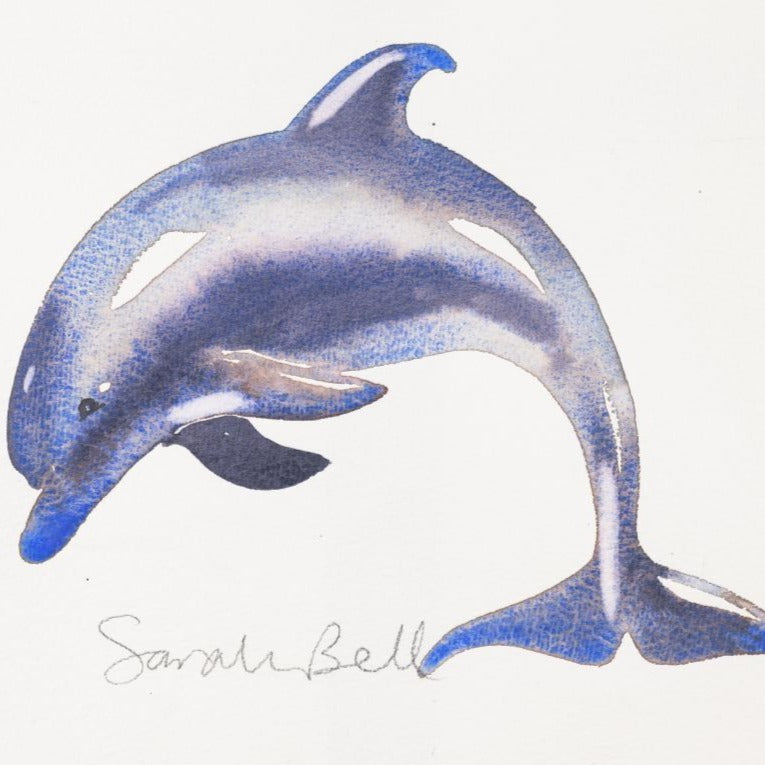 """Dolphin"" Original Watercolour By Sarah Bell"