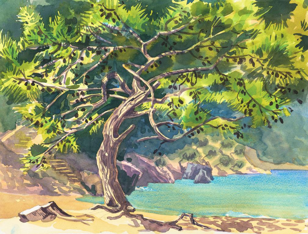 """Turkish Pine (PinusBrutia)Tree Turtle Beach Dalyan  Original Watercolour by Sarah Bell"