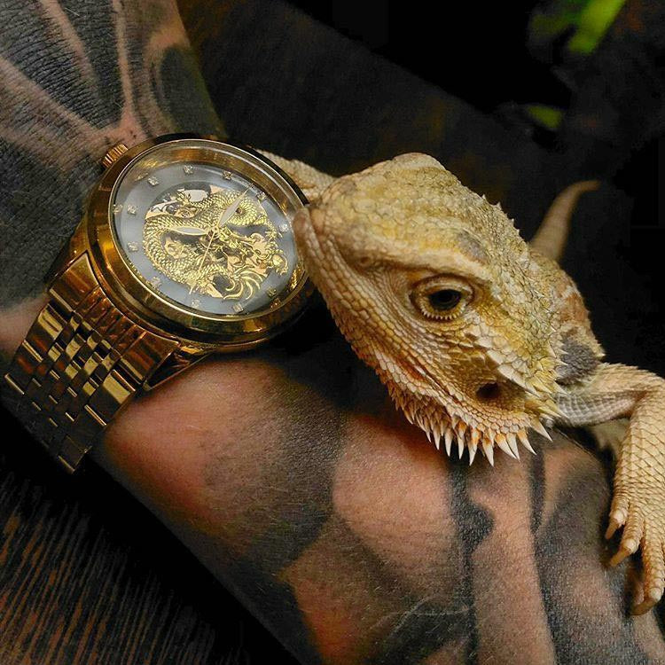 @meganxpotter photo of watch with lizard