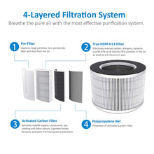 Load image into Gallery viewer, Arovec AV-P300-RF Air Purifier Replacement Filter (2 Pack)