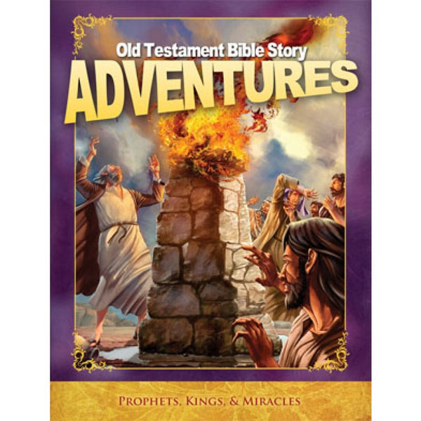 Old Testament Bible Story Adventures by Home Health Education Services