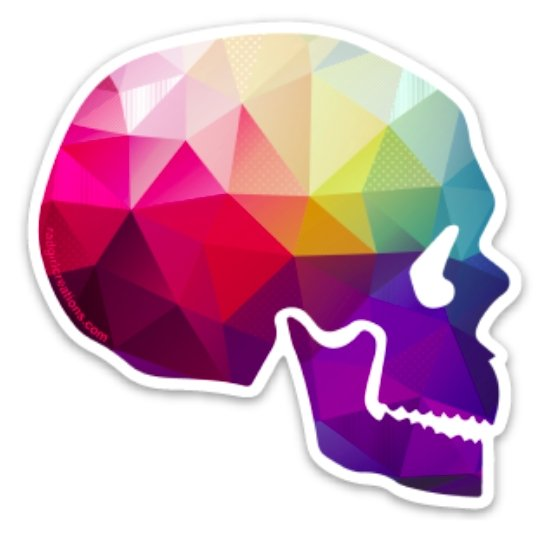 Geometricolor Skull Decal - Rad Girl Creations