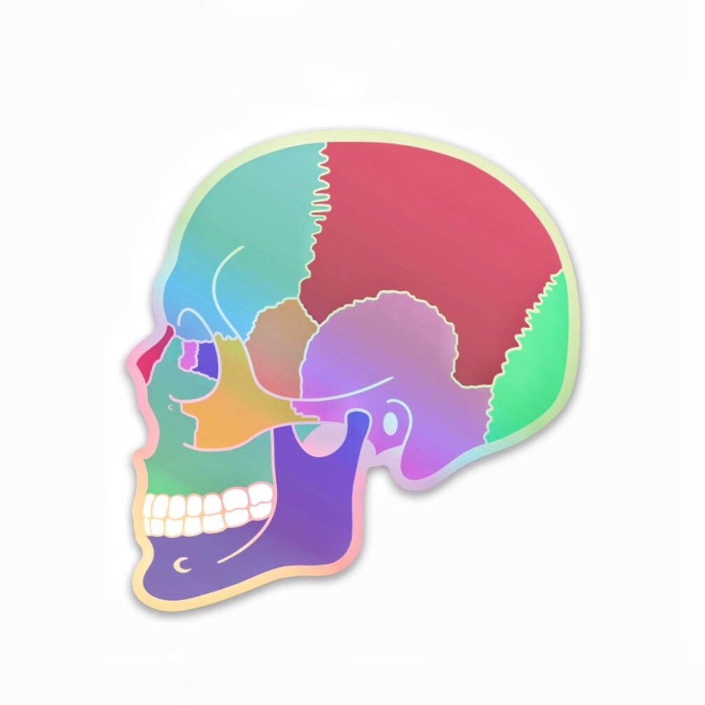 Holographic Textbook Anatomy Skull Decal - Rad Girl Creations